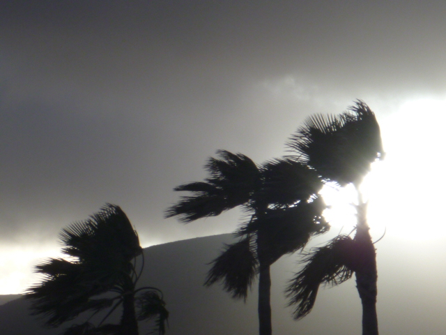 The warm winds of Lanzarote