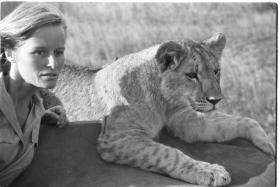 Virginia during the filming of Born Free © Born Free Foundation