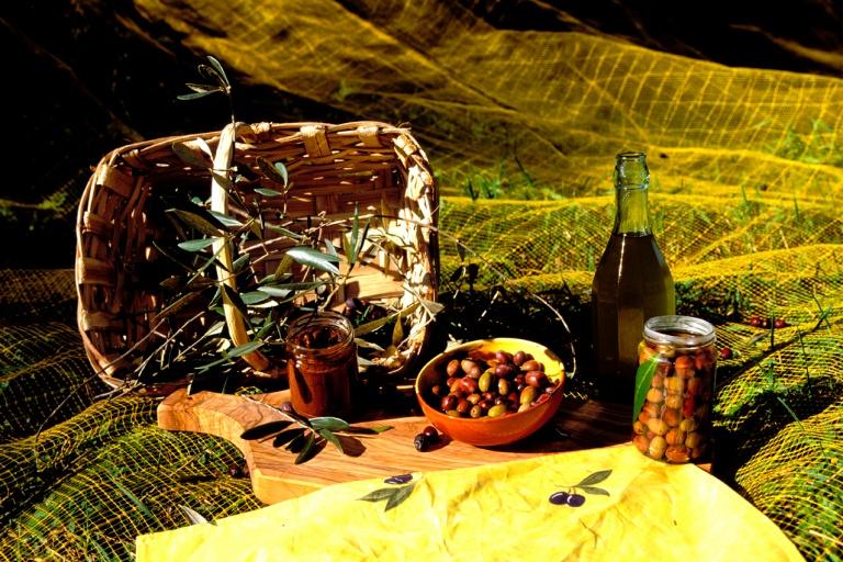 Oliveto, prodotti tipici derivati dalla coltivazione dell'olivo.